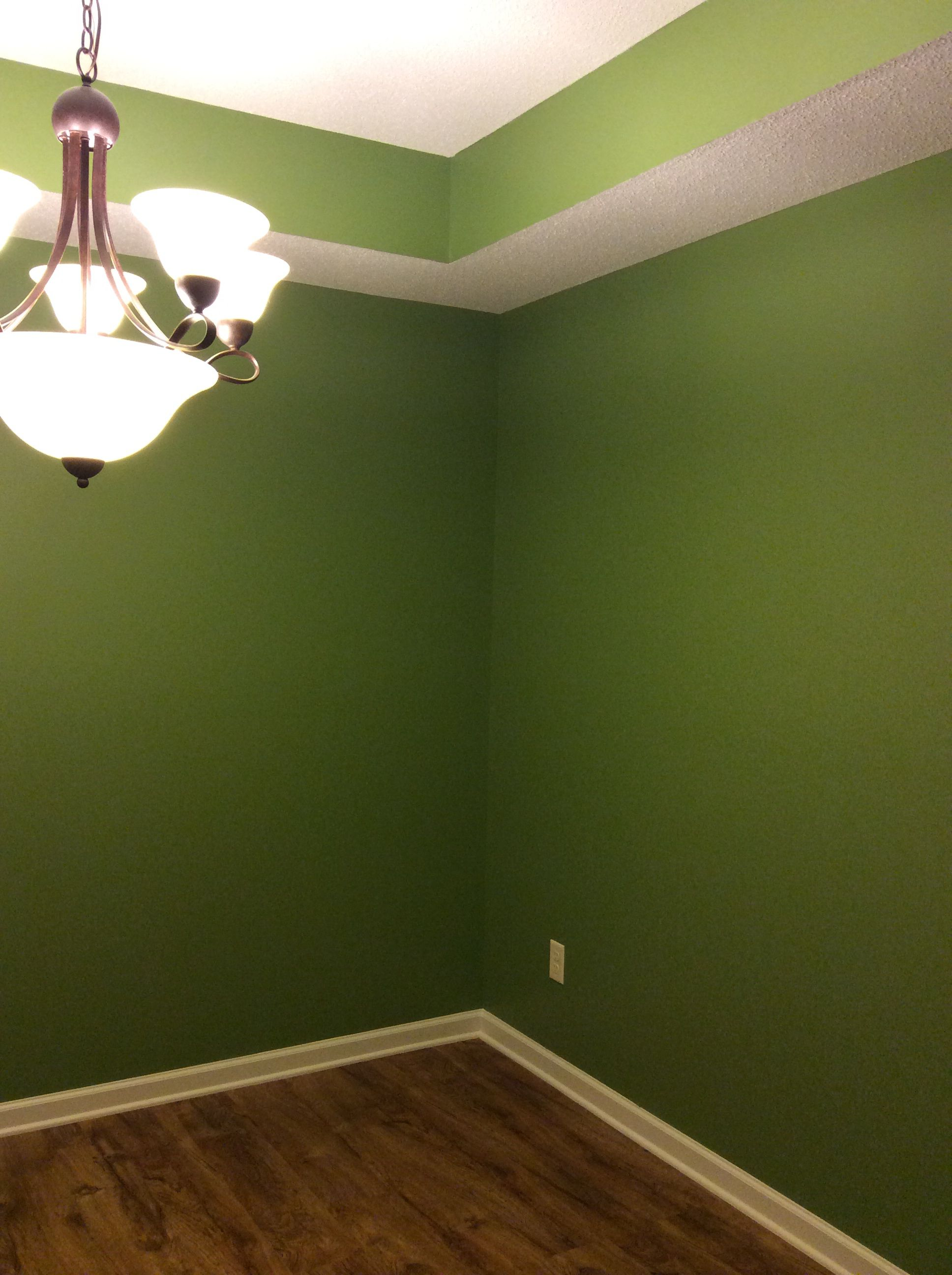Sherwin Williams Leapfrog Dining Room