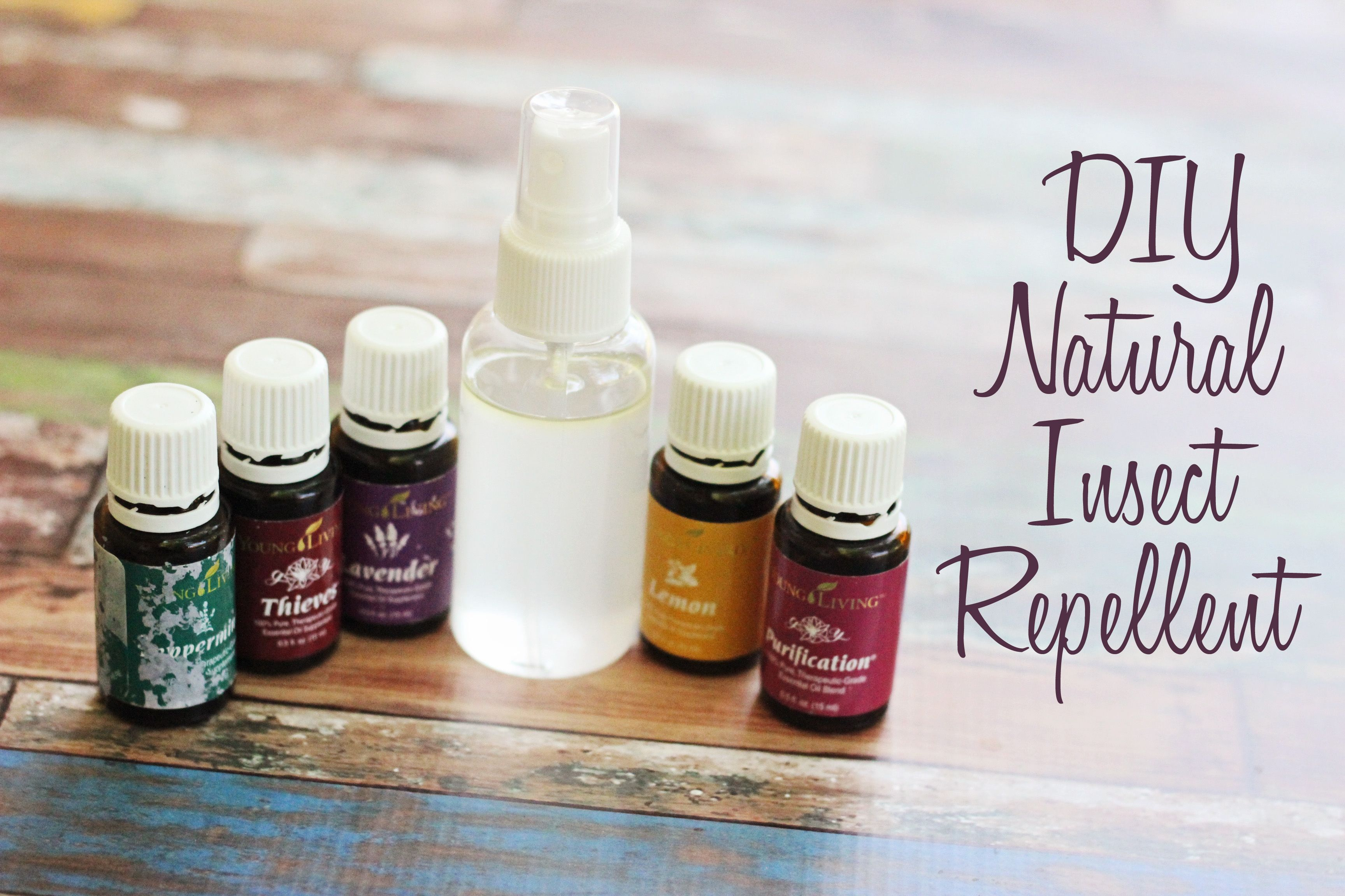 Diy Natural Insect Repellent  Sweet T Makes Three