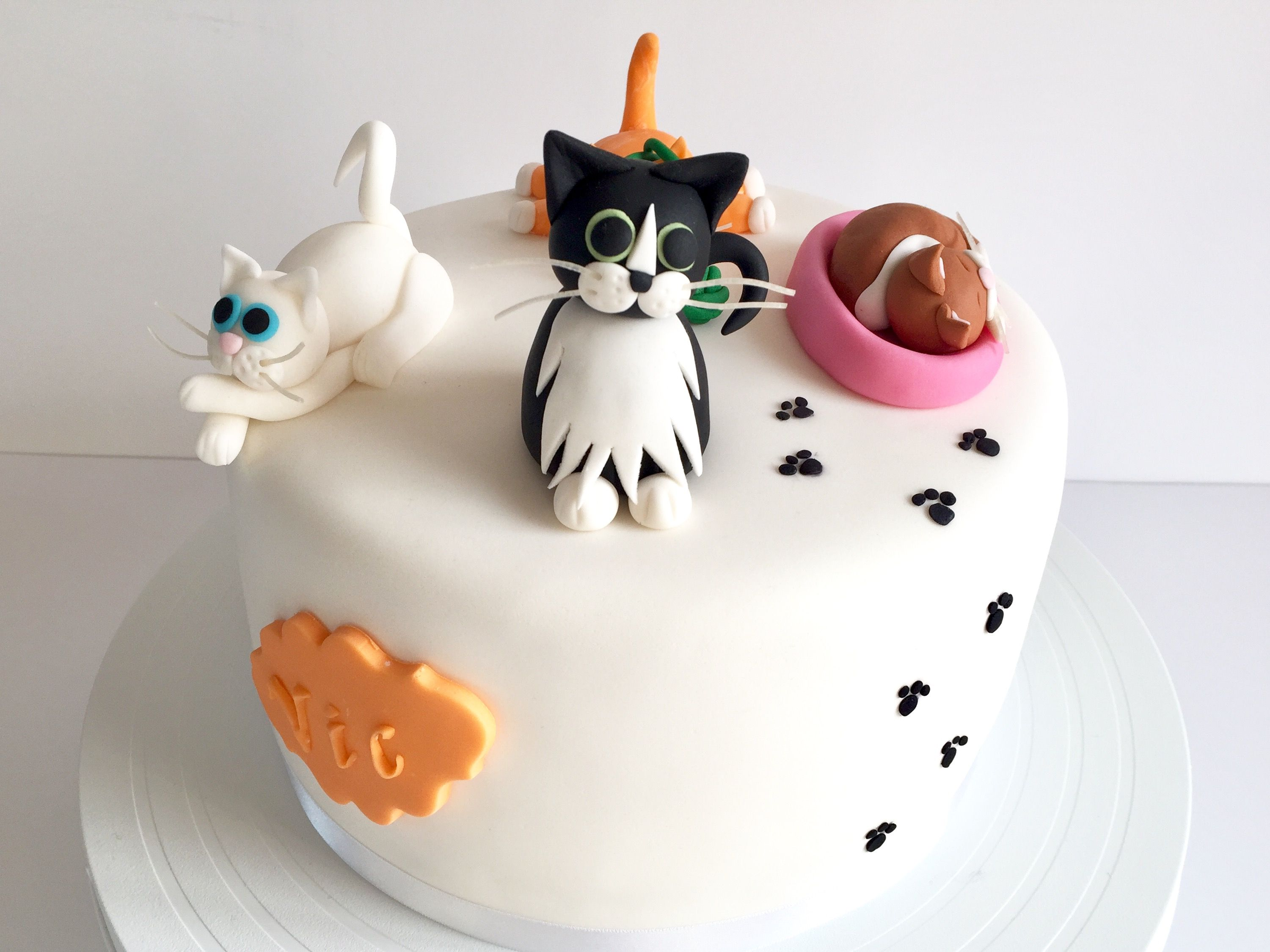 91 Birthday Cake Cat Design