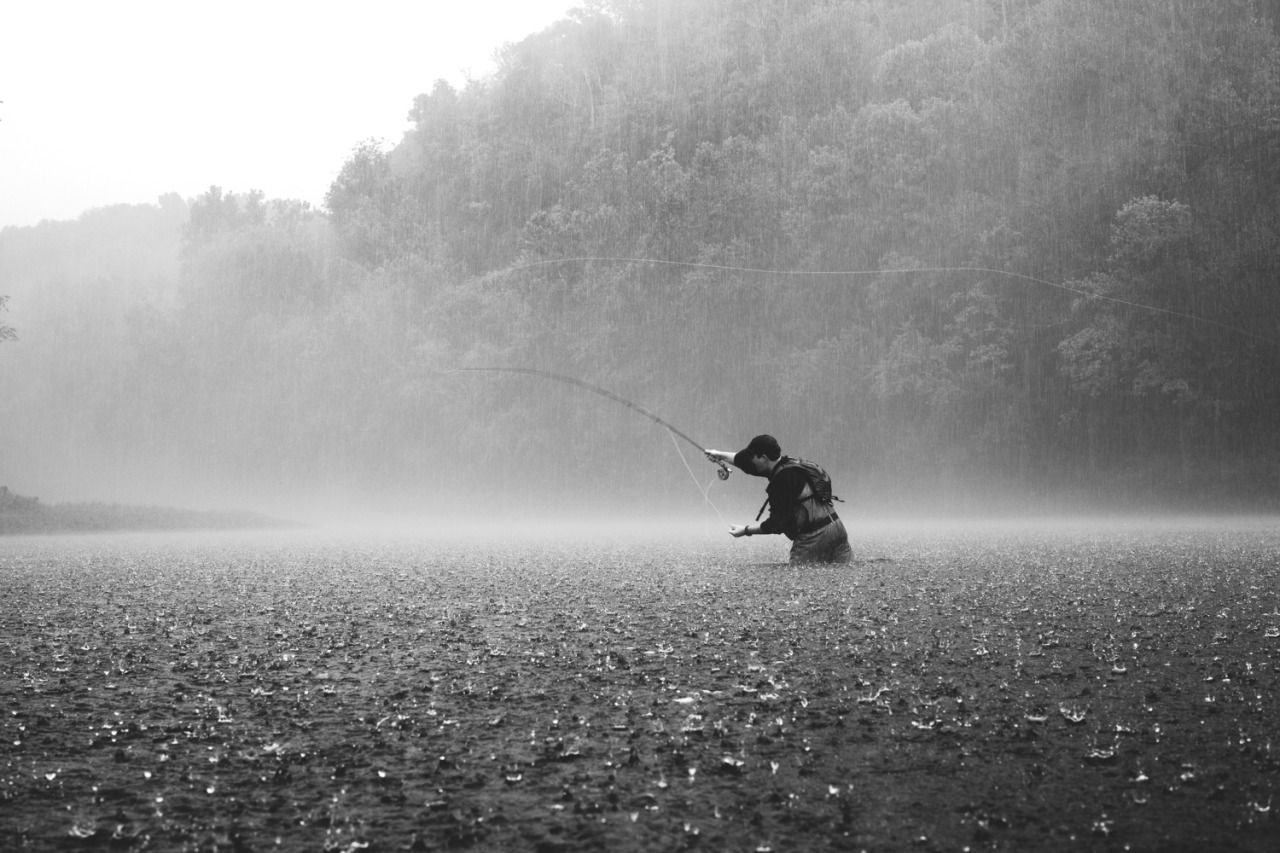 Big Skies A Dog My Truck And Whiskey Please Singing In The Rain Fishing Basics Fly Fishing