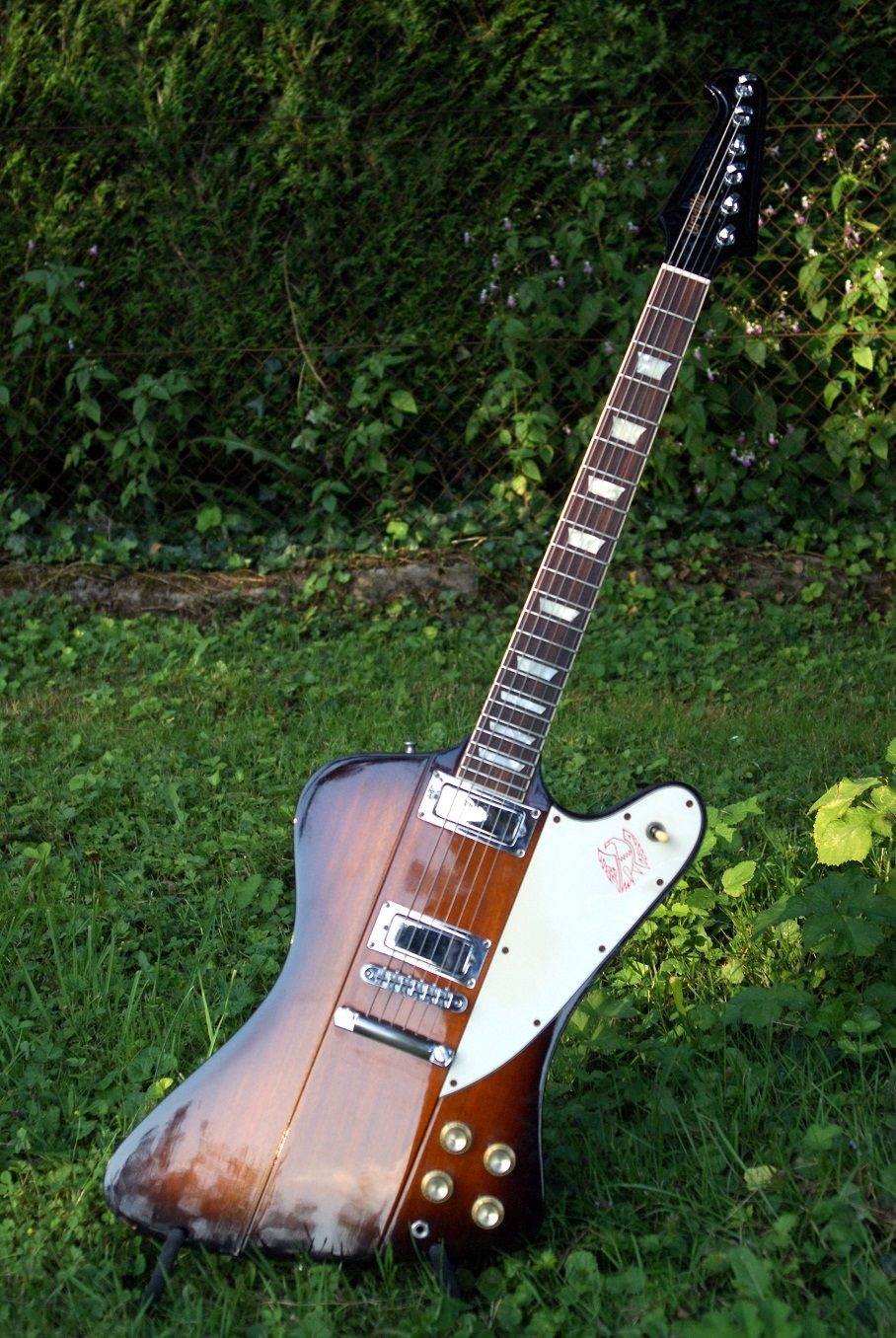 Orville by Gibson Firebird | Japan's Best Guitars (and Korea) in