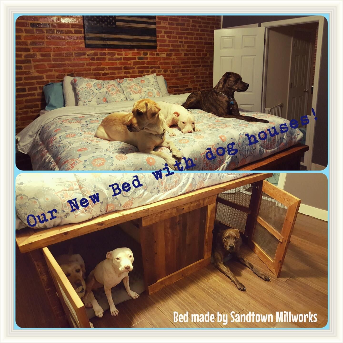 Custom Bed With Dog Crates And Storage Underneath