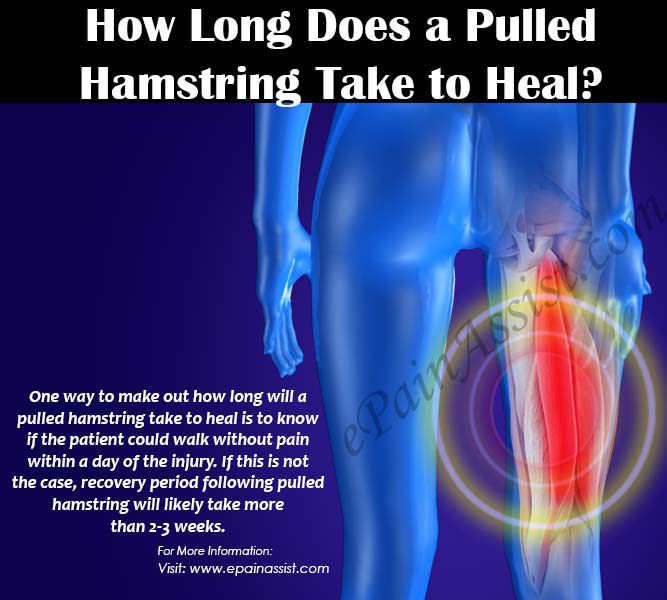 How Long Does A Pulled Hamstring Take To Heal & What To Do ...