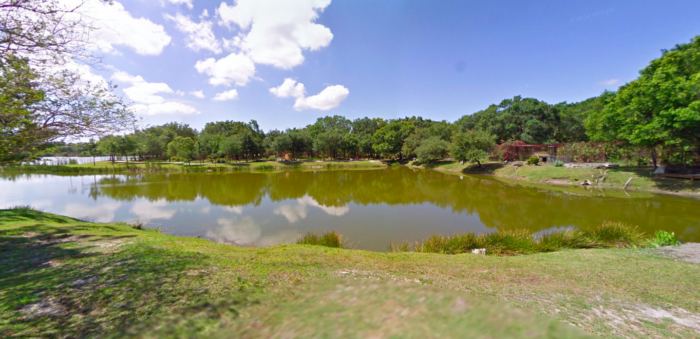 The OneOfAKind Park In Florida Where You Can See Wild