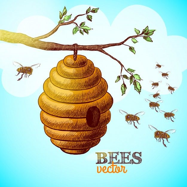 Download Honey Bees And Hive On Tree Branch Background Vector Illustration For Free Bee Images Honey Bee Images Bee Hive