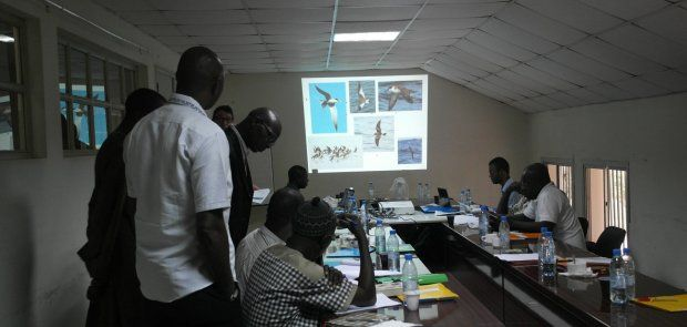 Training observers and scientists to unveil interactions between seabirds and fishing activities off the coast of West Africa