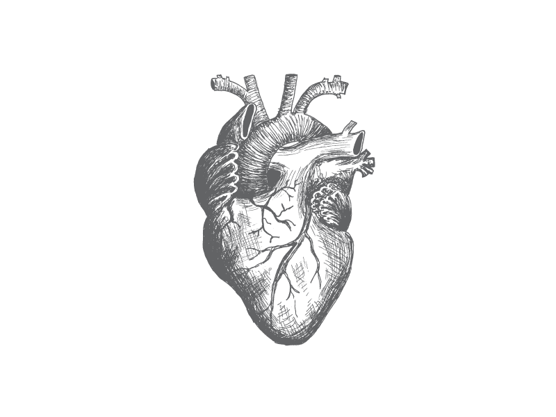 Heart On Heart Drawing Realistic Heart Tattoo Realistic Drawings