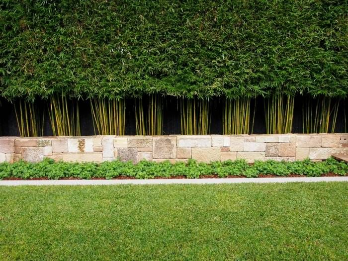 Bambus Hecke hecke im garten aus zugeschnittenem exotischen bambus boirimhe