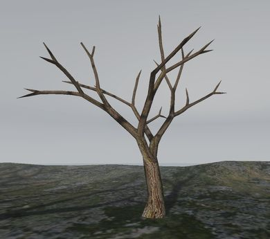 bare tree photo - Google Search   Bare tree