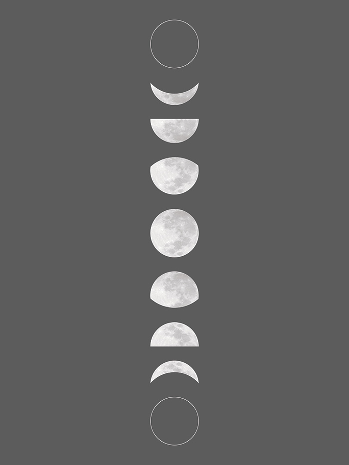 The Nest Free Printable Moon Phase Art And Pattern Downloads And Pattern Making Tutorial With Snapbox Squirrelly Minds Moon Phases Art Free Printable Wall Art Wall Printables