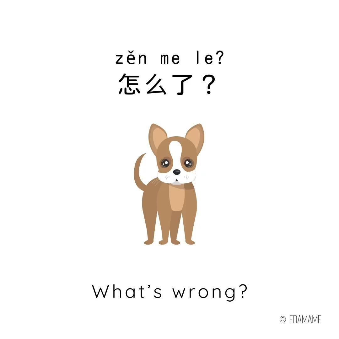 Mandarin Chinese Video Flashcard Chinese Language Chinese Phrases Mandarin Chinese Learning