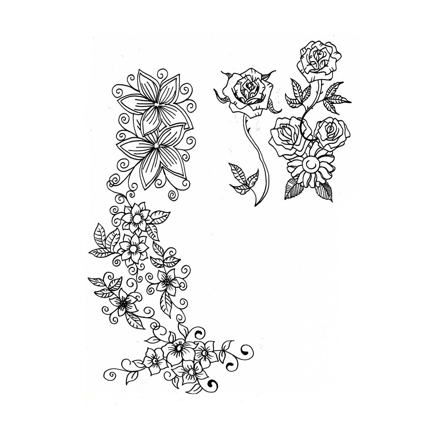 Flores Enredaderas Para Colorear Enredaderas Con Flores Enredaderas Colores