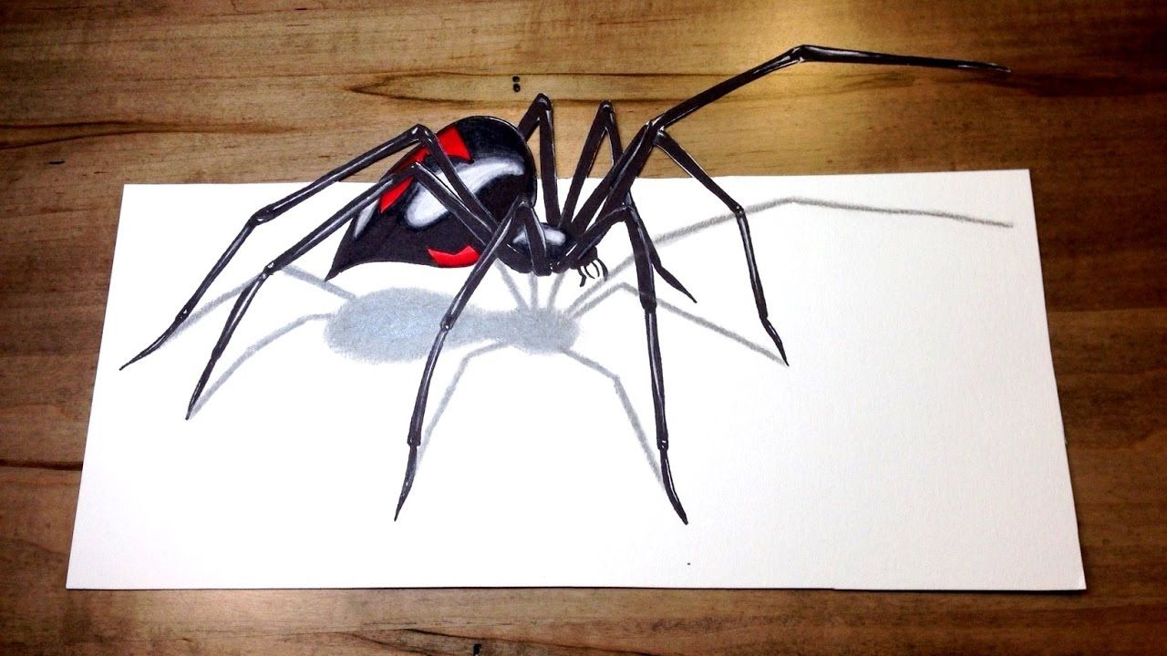 Will It Bite Black Widow Challenge 3d Spider Drawing