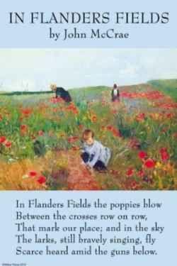 Lark Farm - In Flanders Fields -