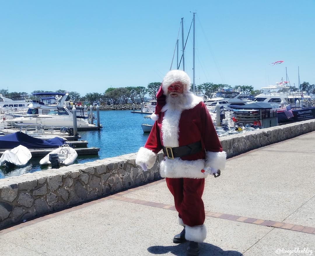 Fun and Free Holiday events happening this weekend! Click link in bio for more info! #sandiego #california #travel #seaportvillage #instagood #movies #weekend #fun #holiday #christmas #festival #sdphotofriday81 #upoutsd #mysdphoto #psilovesd #adventuresofsandiego #visitsd #sdholidays #santa