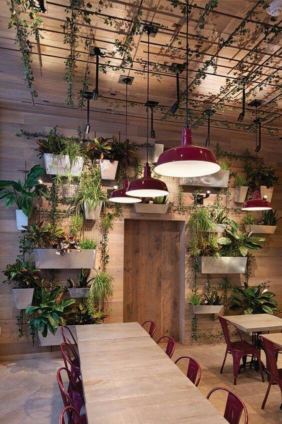 restaurant with biophilic design elements