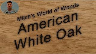 American White Oak - Mitch's World of Woods - YouTube