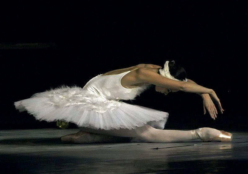 кадре анна умирающий лебедь балет фото для