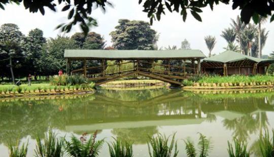 Jard n bot nico jos celestino mutis bogot turismo for Jardin botanico bogota