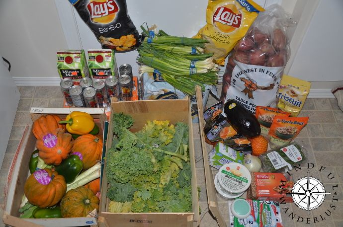 Dumpster Diving Exposing The World S Food Waste