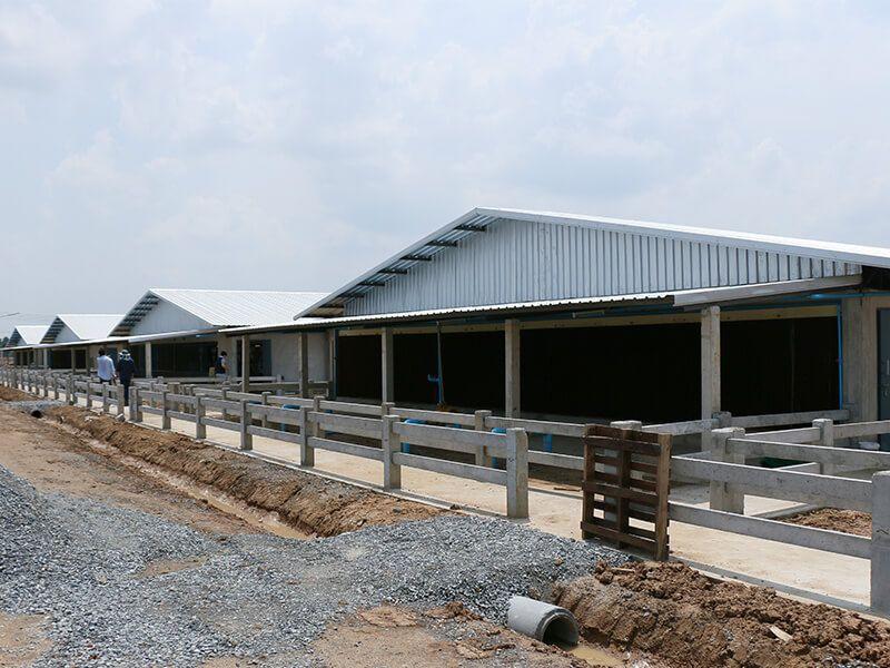 Pig Farm Design In 2020 Pig Farming Farm Design Farm Layout