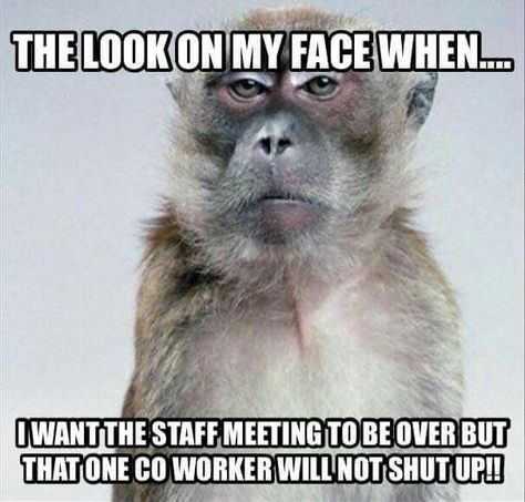 50 Funniest Photos Of The Week Vol 12 Getsokt Com Work Quotes Funny Work Humor Workplace Humor