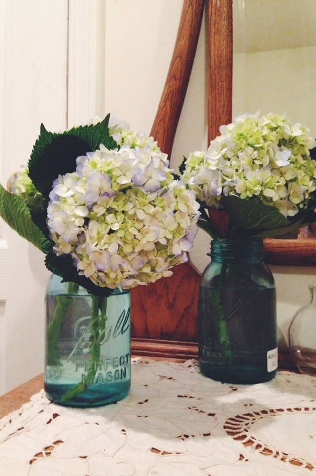 Nothing Like August Flowers From Trader Joe S Simple Hydrangeas August Flowers Flowers