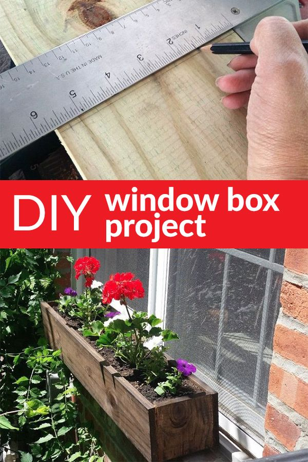 Make a DIY Window Box with a Patriotic Twist!