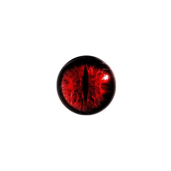 Glass Eyes Dragon Taxidermy Red Fantasy Eyes Eye Set Of 2 25mm 1 10 Liked On Polyvore Featuring Eyes Dragons A Taxidermy Eyes Dragon Eye Glass Eyes