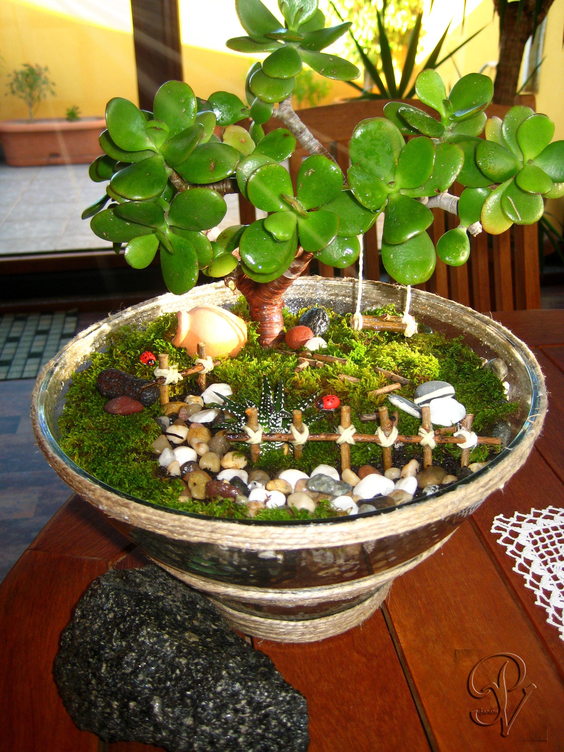 Terrario giardino in miniatura by punti di verde - Giardino in miniatura ...
