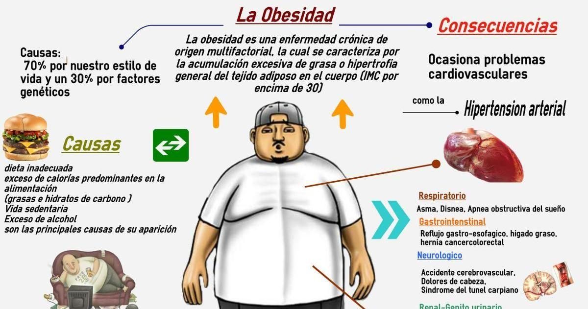 Obesidad: causas, consecuencias y maneras de evitarla