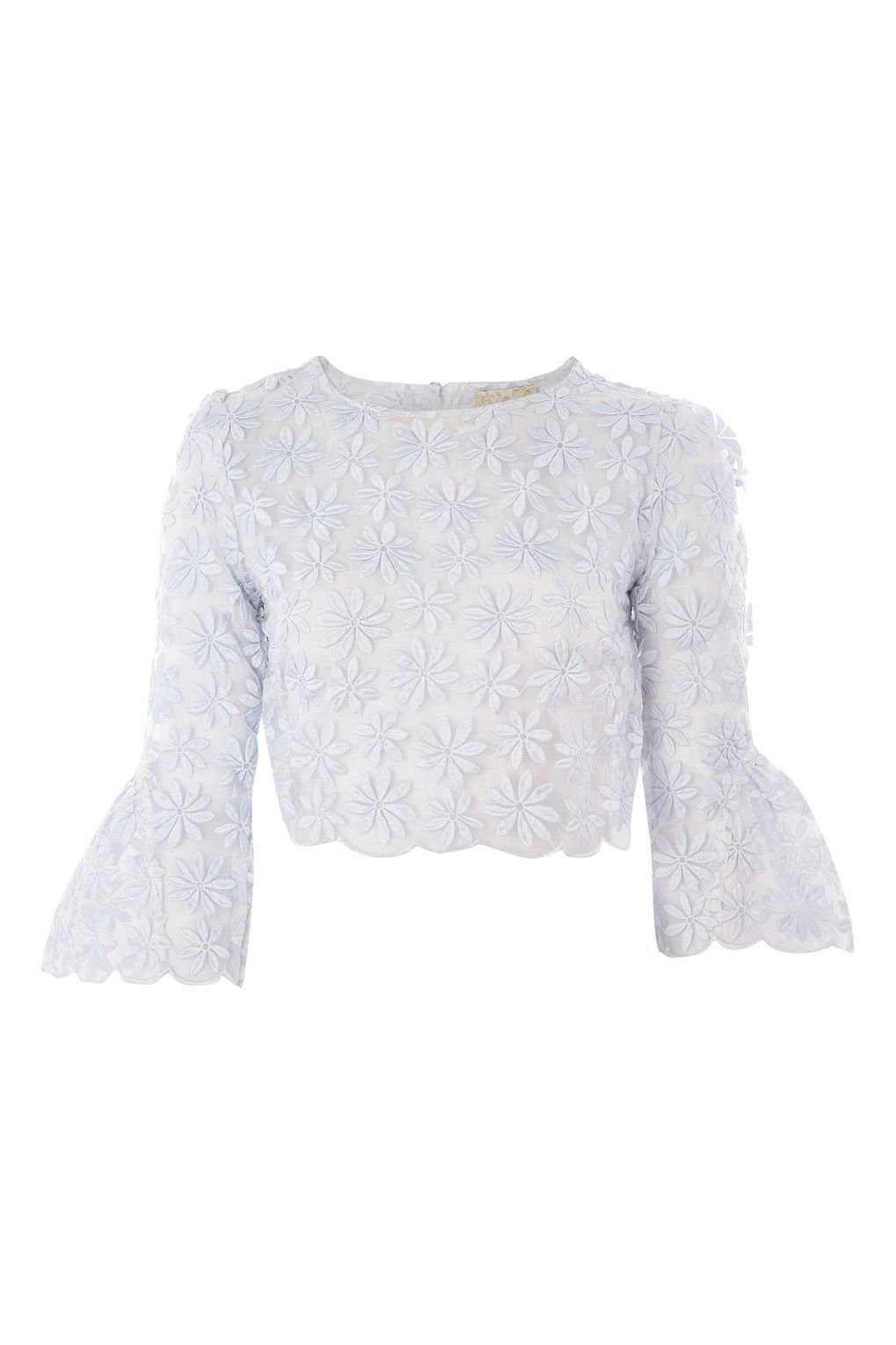 Goose Embroidered Mesh Crop Top By Lace Beads Lace Mesh Crop Top Crop Tops