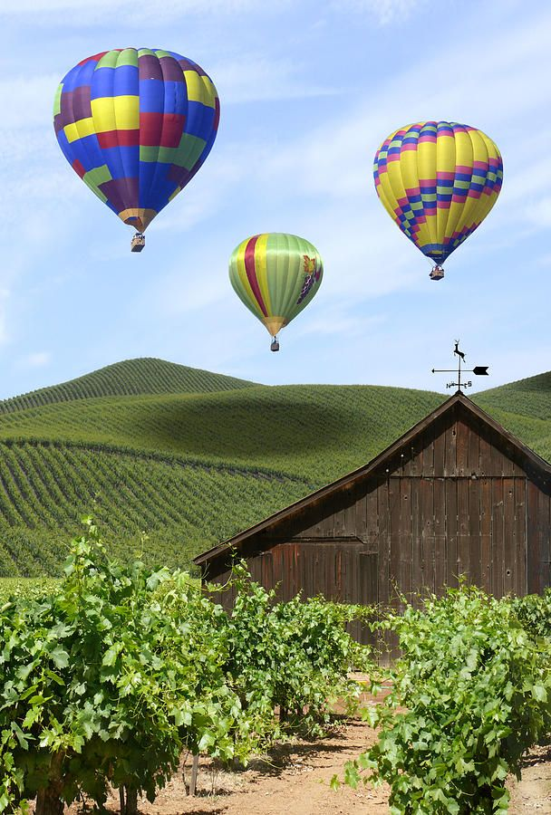A Ride Through Napa Valley by Mike McGlothlen Air