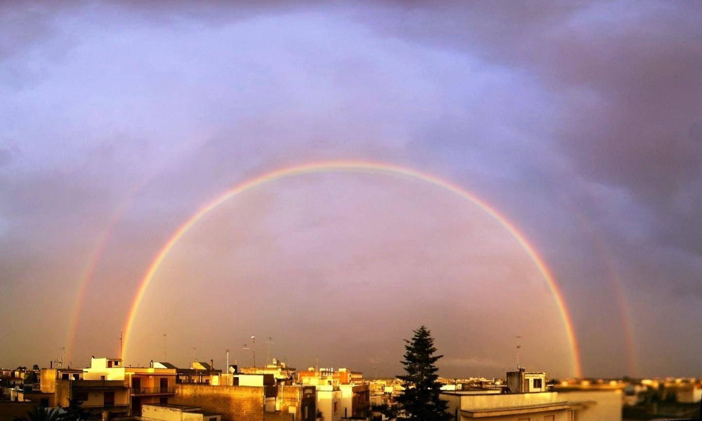 Maglie nel semicerchio perfetto di due arcobaleni (foto by  Massimiliano Rainò)