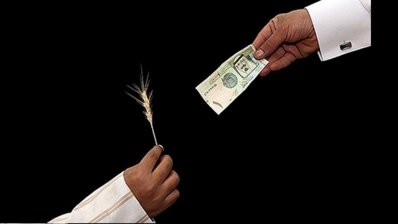 كيفية احتساب زكاة المال Daniel Wellington