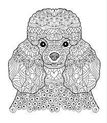 Картинки по запросу дудл собака | Книжка-раскраска ...
