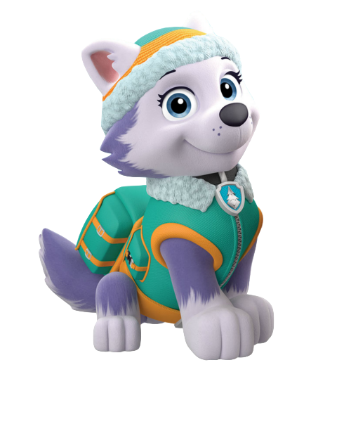 Paw Patrol Birthday | Paw patrol birthday, Paw patrol and