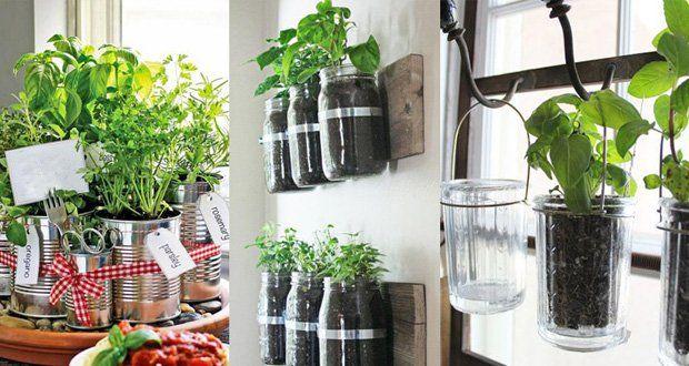7 herbes aromatiques et m dicinales faciles faire pousser chez soi et comment les cultiver. Black Bedroom Furniture Sets. Home Design Ideas