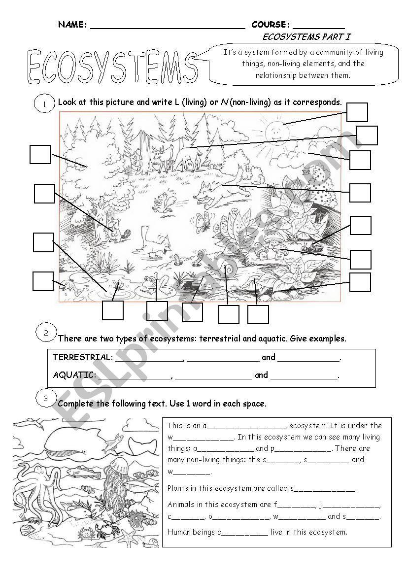 Ecosystems Part 1 Esl Worksheet By Cristina84 Ecosystems Vocabulary Worksheets Social Studies Worksheets