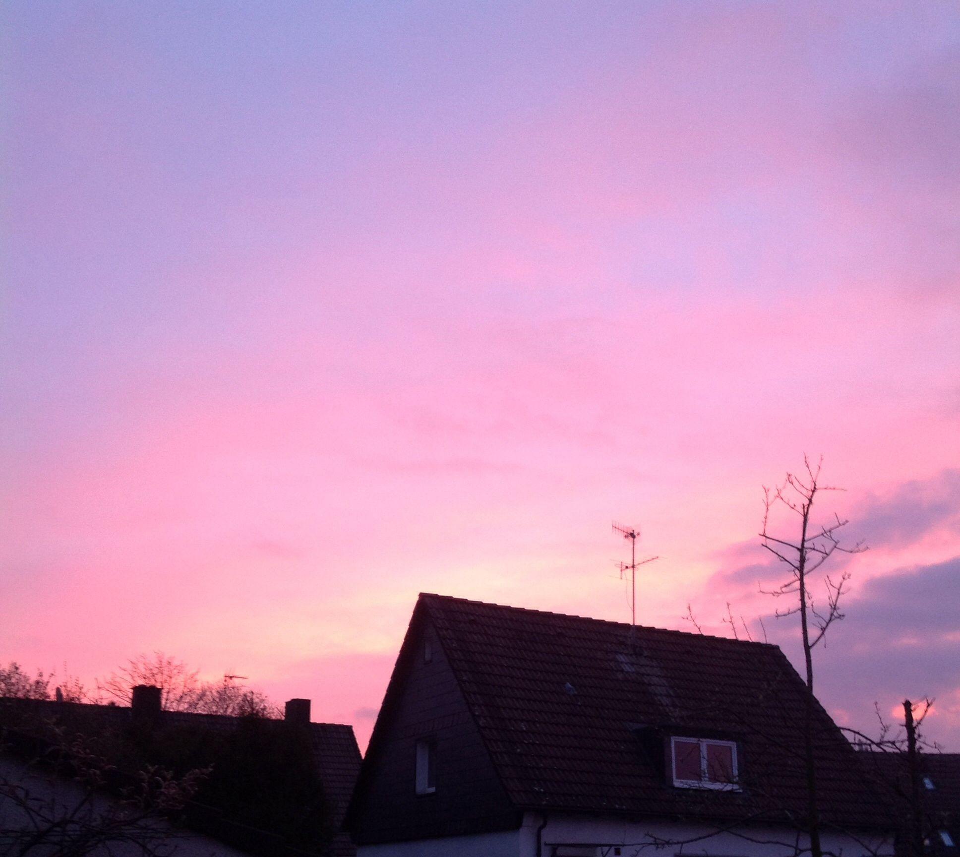Purple Sky  Sonnenaufgang