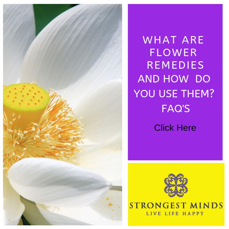 FAQ's How flower remedies can help. Drugless medicine