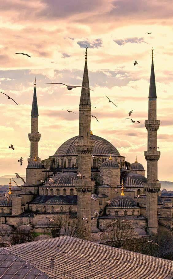 Blå Moské, Istanbul Tyrkiet smukke moskeer-9520