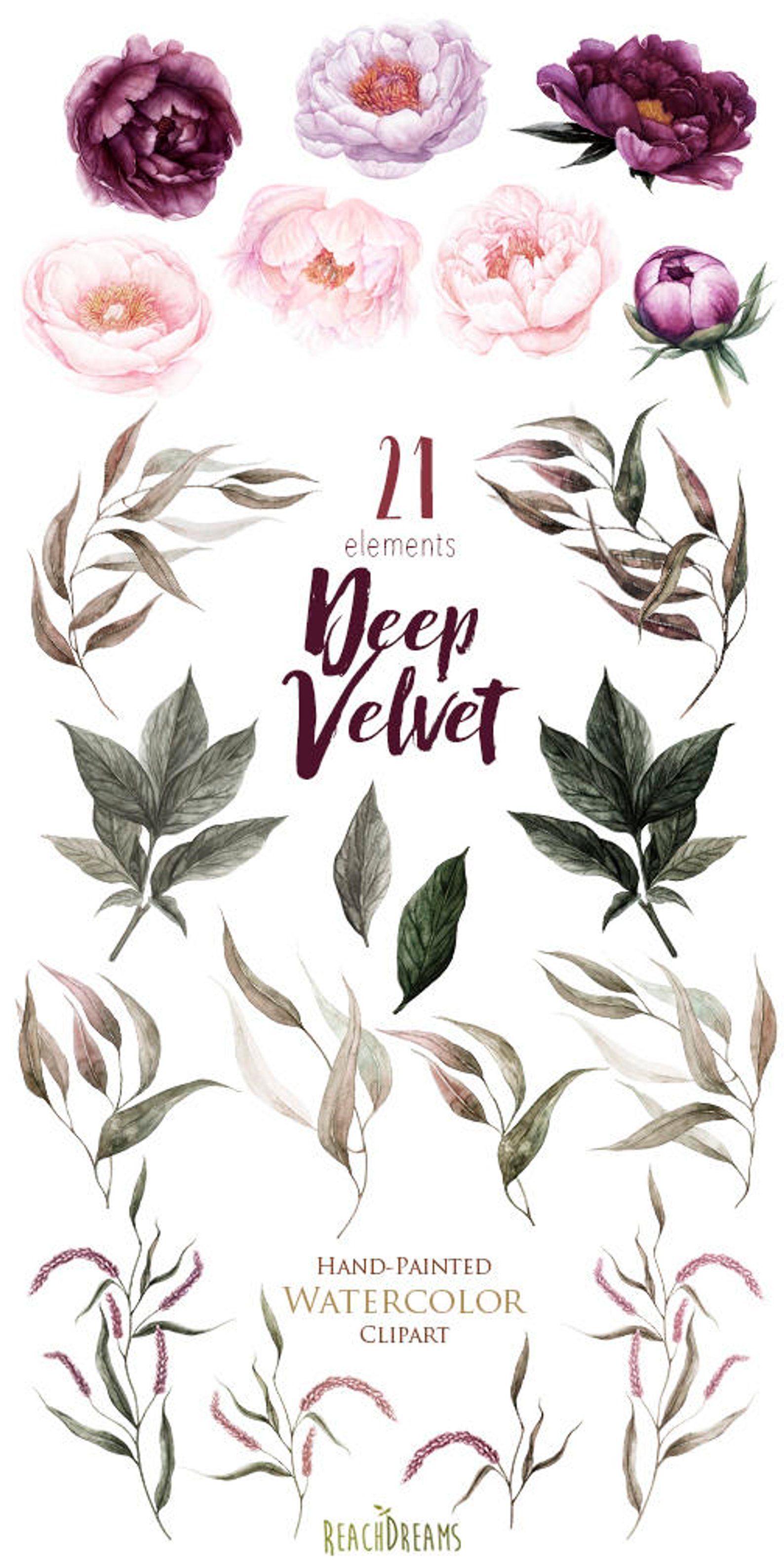 Peonies Flowers Watercolor Floral Elements Plum Burgundy Violet Botanical Boho Clipart Hand Painted Wedding Clip Art Digital Png Blumen Aquarell Blumenzeichnung Wasserfarbenblumen