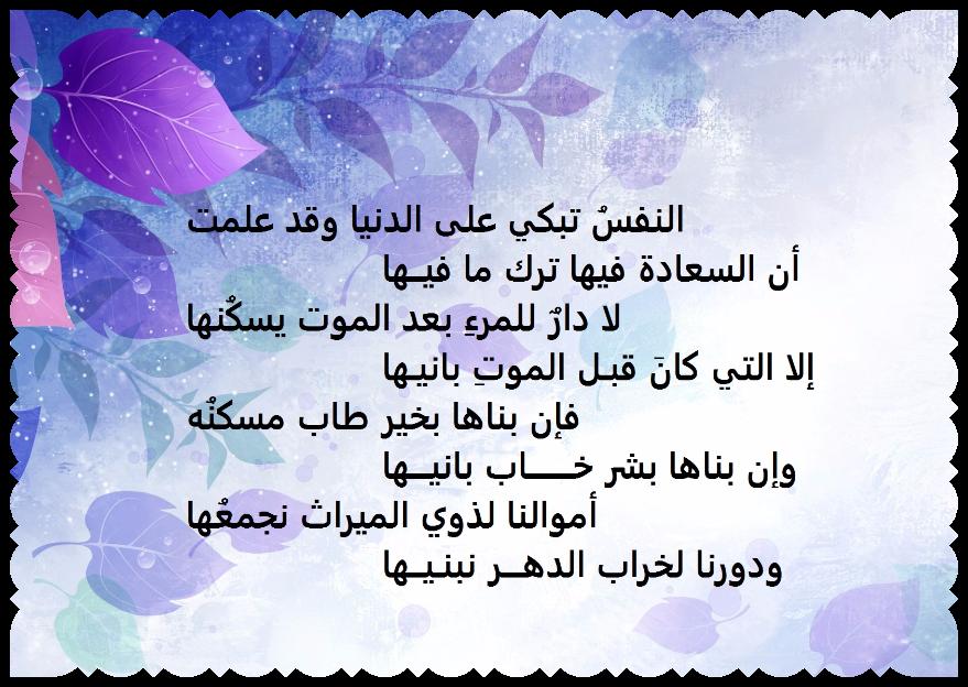 حقيقة الدنيا ابيات للامام علي بن ابي طالب رضي الله عنه Wisdom Quotes Words Quotes