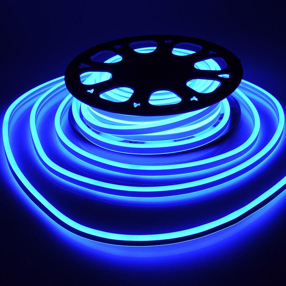 Thediyoutlet Double Side Flexing Led Neon Rope Light Blue 50 Rope Light Rope Lights Bedroom Led Rope