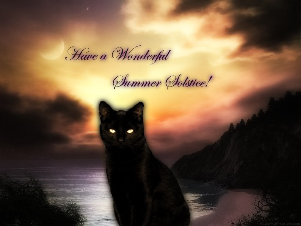 Image result for summer solstice feline