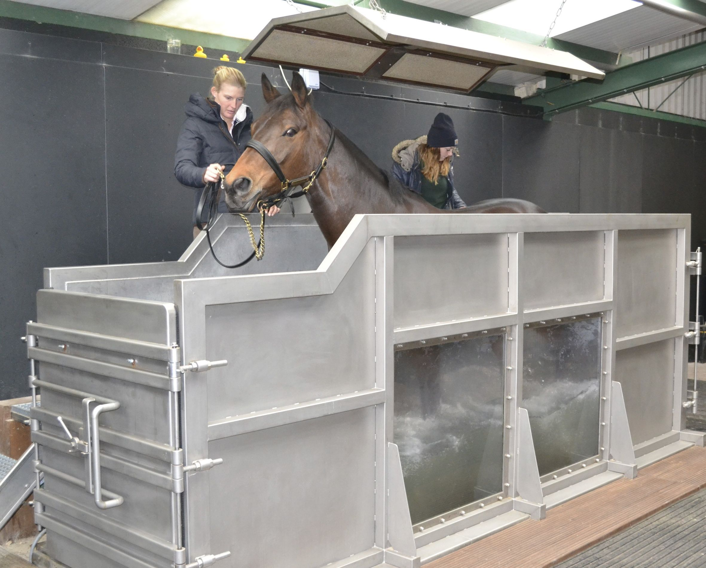 Equine Water Treadmill Equine Water Treadmills Dream