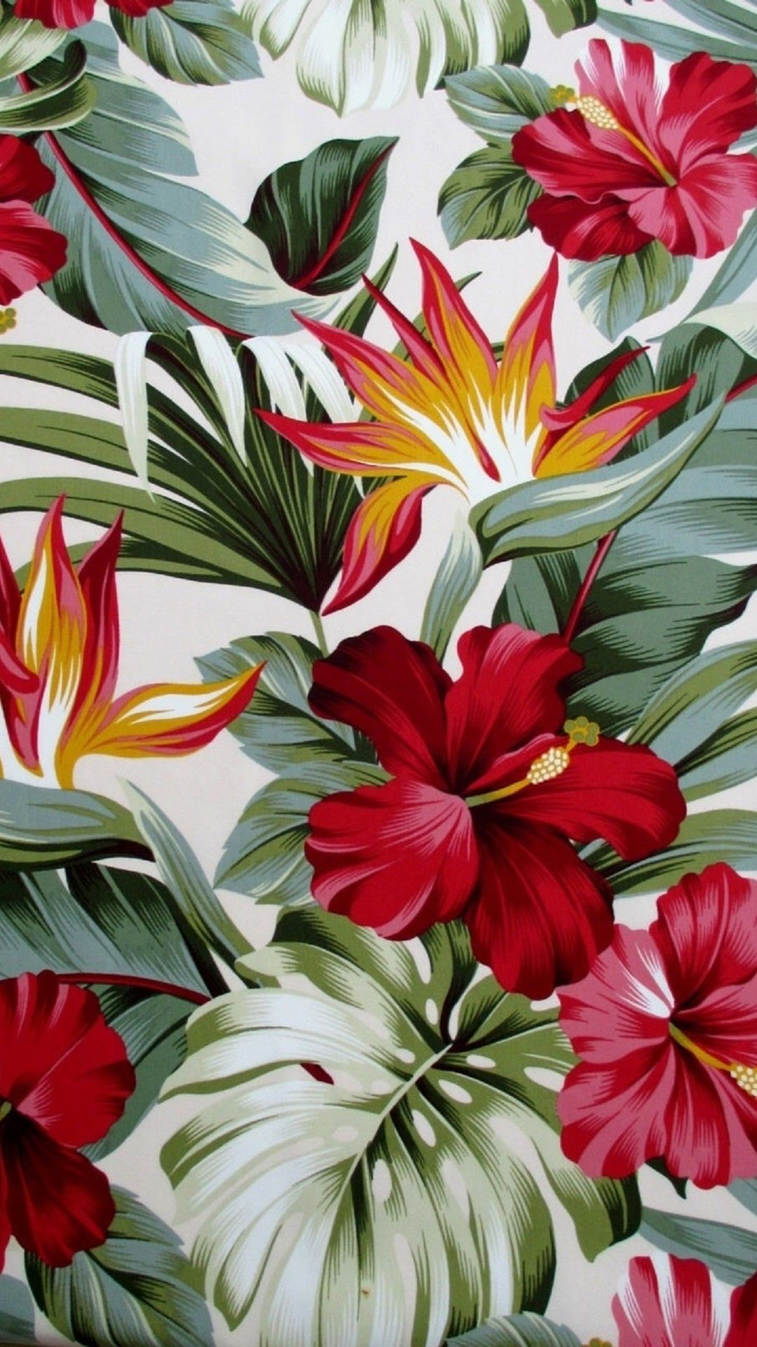 Tropical Flowers Red Hibiscus Tap To See More Florence Broadhurst