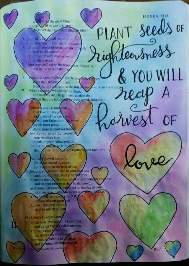 Hosea 10:12 Sow righteousness, reap love. Bible art journaling by @peggythibodeau www.peggyart.com