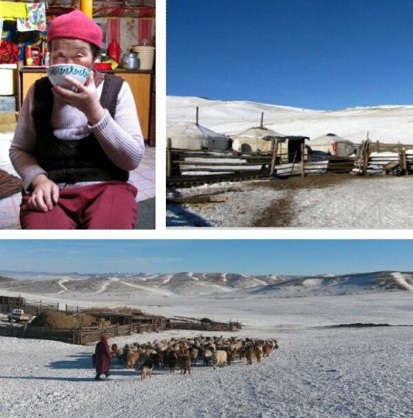 Mongolian kuutamon taikaa. Kuutamon tullen automme kaartelee karua korpea pitkin pieneen laaksoon, jossa juhlitun pojan isoäiti asuu miehensä, nuorimman lapsenlapsensa sekä lampaidensa ja lehmiensä kanssa.